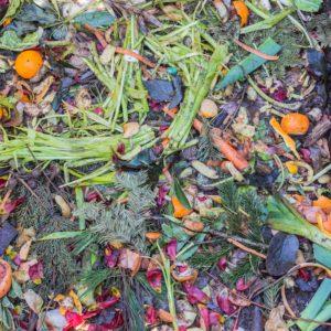 eco-circuito-food-waste