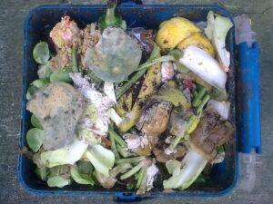 Lixo orgânico em empresas